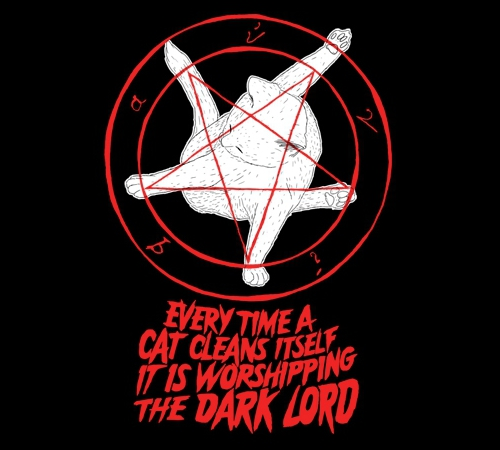 Cat Pentagram Dark Lord Cleaning Ritual T-Shirt