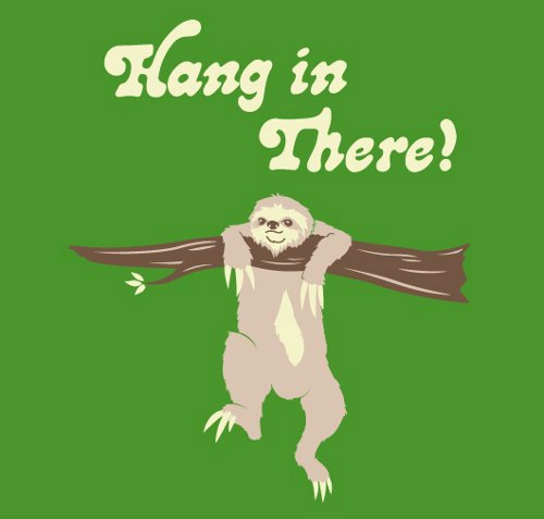 Hang In There Sloth T-Shirt