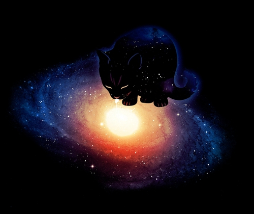 Cat Drinks the Milky Way Galaxy T-Shirt