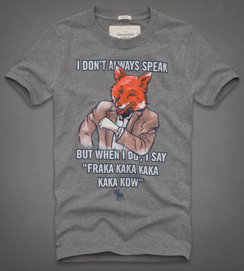 Most Interesting Fox In The World T-Shirt