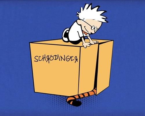 Schrodinger's Cat Calvin and Hobbes Tiger T-Shirt