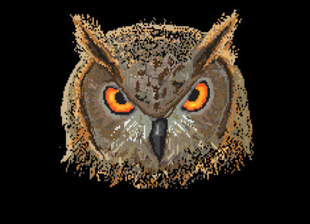 Pixel Owl Face T-Shirt