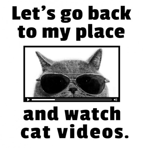 Go Back To My Place Watch Cat Videos T-Shirt