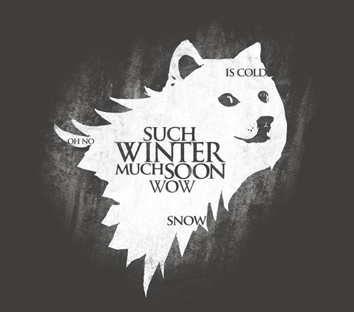 Such Winter Much Soon Doge Game of Thrones T-Shirt