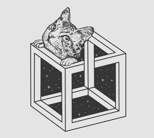 Optical Illusion Cat Box Space T-Shirt