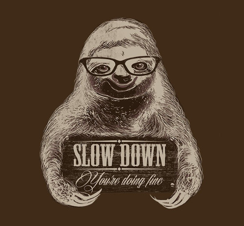 Slow Down Sloth Glasses Funny T-Shirt