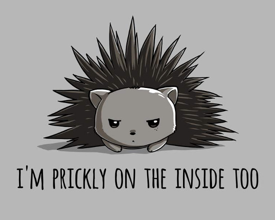Prickly on the Inside Cute Hedgehog T-Shirt