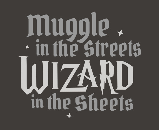Muggle in the Streets Wizard in the Sheets Harry Potter T-Shirt