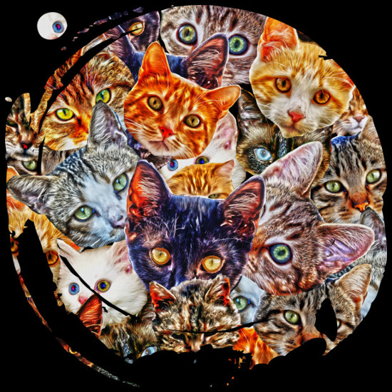 Kitty Cats Face Collage T-Shirt