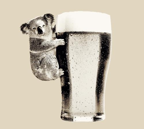 Koala Loves Beer T-Shirt