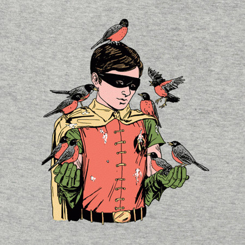 Robin Birds Funny Batman T-Shirt