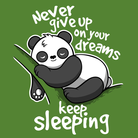 Never give up on your dreams keep sleeping panda t-shirt