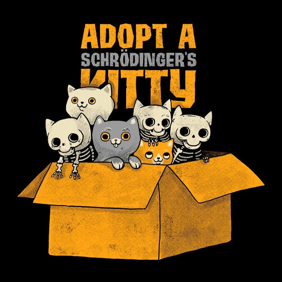 Adopt a Schrödinger's Kitty T-Shirt