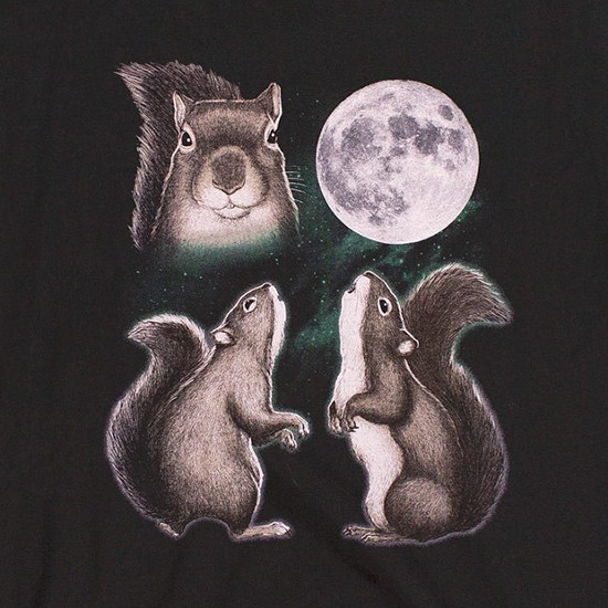 Three Squirrel Moon T-Shirt